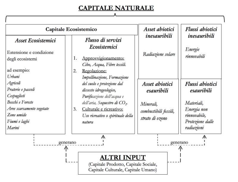 asset capitale naturale