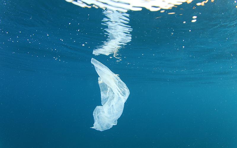 L'OMS intende acquisire maggiori dati sulle microplastiche nell'acqua